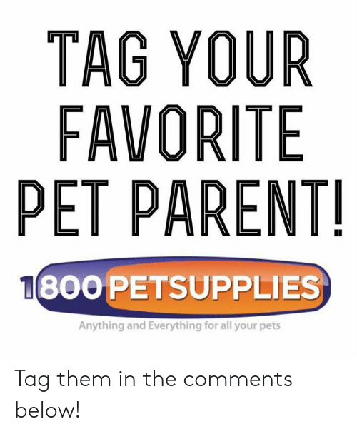 Memes, Pets, and 🤖: TAG YOUR  FAVORITE  PET PARENT  800 PETSUPPLIES  Anything and Everything for all your pets Tag them in the comments below!