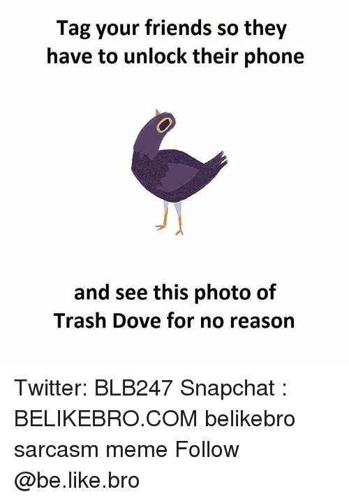 Trash Dove: Tag your friends so they  have to unlock their phone  and see this photo of  Trash Dove for no reason Twitter: BLB247 Snapchat : BELIKEBRO.COM belikebro sarcasm meme Follow @be.like.bro