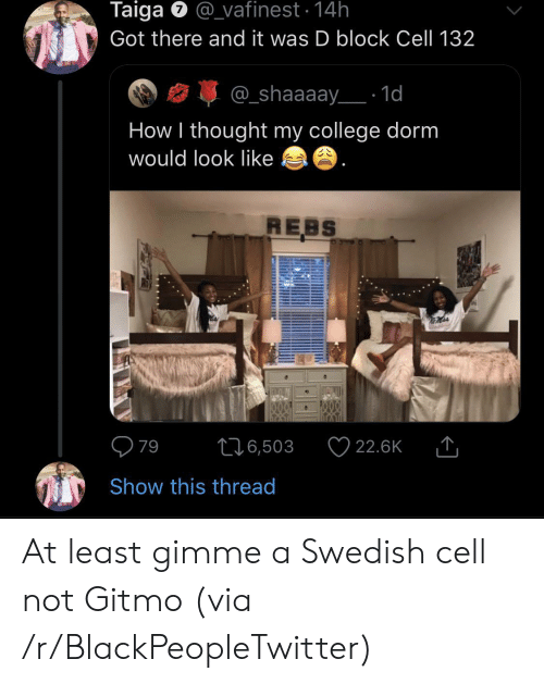 Got There: Taiga @vafinest 14h  Got there and it was D block Cell 132  @_shaaaay 1d  How I thought my college dorm  would look like  REBS  79  22.6K  L16,503  Show this thread At least gimme a Swedish cell not Gitmo (via /r/BlackPeopleTwitter)