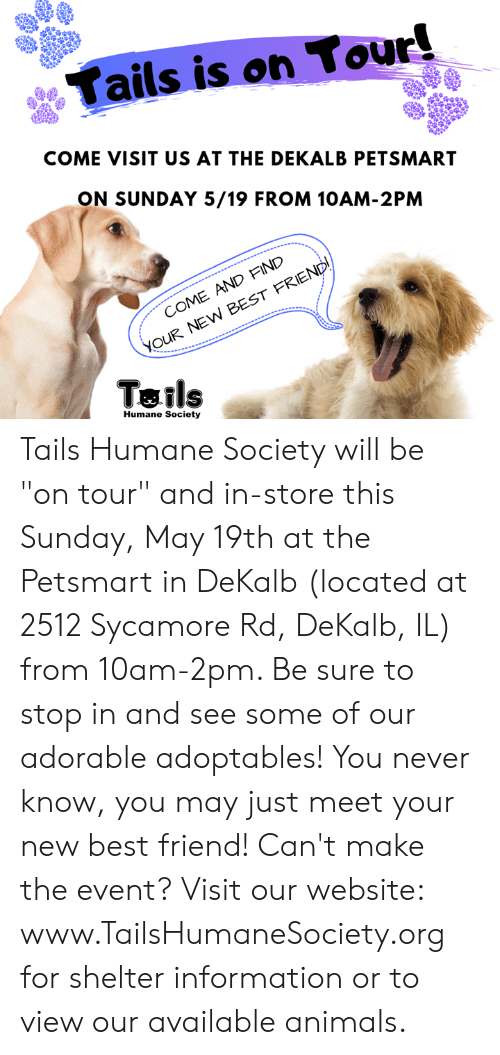 "Animals, Best Friend, and Memes: Tails is on Tour!  COME VISIT US AT THE DEKALB PETSMART  ON SUNDAY 5/19 FROM 10AM-2PM  COME AND FIND  YOUR NEW BEST FRIEND!  Tails  Humane Society Tails Humane Society will be ""on tour"" and in-store this Sunday, May 19th at the Petsmart in DeKalb (located at 2512 Sycamore Rd, DeKalb, IL) from 10am-2pm. Be sure to stop in and see some of our adorable adoptables! You never know, you may just meet your new best friend!   Can't make the event? Visit our website: www.TailsHumaneSociety.org for shelter information or to view our available animals."