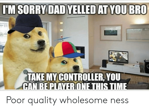 Wholesome, Ness, and You: TAKE MYCONTROLLER, YOU Poor quality wholesome ness