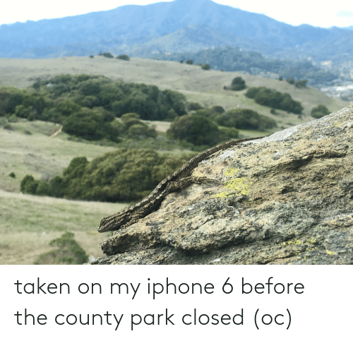 Iphone 6: taken on my iphone 6 before the county park closed (oc)