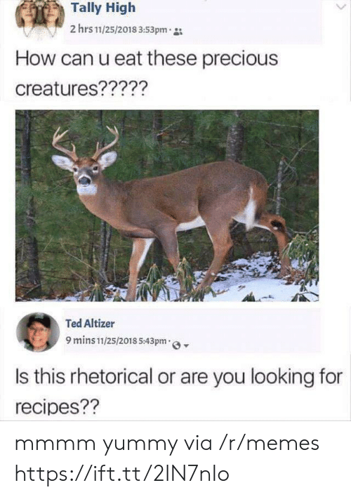 Yummy: Tally High  2 hrs 11/25/2018 3:53pm  How can u eat these precious  creatures?????  Ted Altizer  9 mins 11/25/2018 5:43pm  Is this rhetorical or are you looking for  recipes?? mmmm yummy via /r/memes https://ift.tt/2IN7nIo