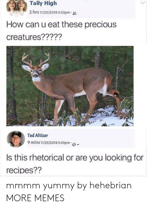 Yummy: Tally High  2 hrs 11/25/2018 3:53pm  How can u eat these precious  creatures?????  Ted Altizer  9 mins 11/25/2018 5:43pm  Is this rhetorical or are you looking for  recipes?? mmmm yummy by hehebrian MORE MEMES