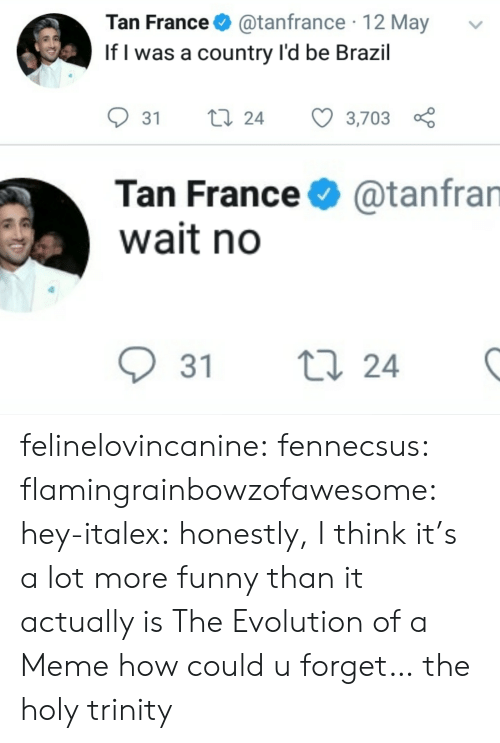 Funny, Meme, and Target: Tan France@tanfrance 12 May  If l was a country l'd be Brazil  31 ti 24 3,703  Tan France  wait no  @tanfran  31 t  24 felinelovincanine:  fennecsus:   flamingrainbowzofawesome:  hey-italex: honestly, I think it's a lot more funny than it actually is The Evolution of a Meme  how could u forget…   the holy trinity