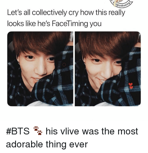 Bts, Adorable, and How: tanhoe  Let's all collectively cry how this really  looks like he's FaceTiming you #BTS 🐾 his vlive was the most adorable thing ever