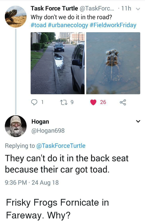task force: Task Force Turtle @Taskforc.., . 1 1 h  Why don't we do it in the road?  #toad #urbanecology #FieldworkFriday  Hogan  @Hogan698  Replying to @TaskForceTurtle  They can't do it in the back seat  because their car got toad.  9:36 PM 24 Aug 18 Frisky Frogs Fornicate in Fareway. Why?