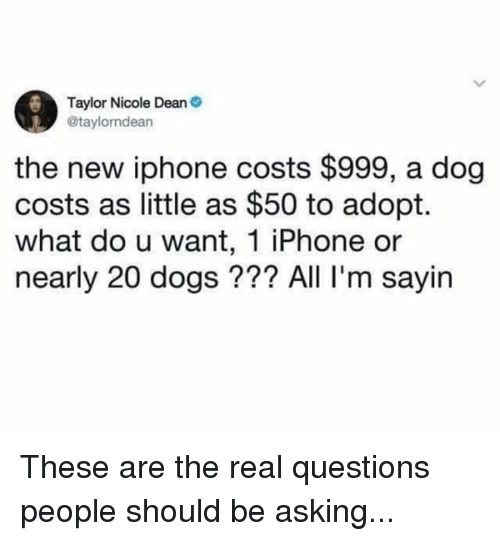Dank, Dogs, and Iphone: Taylor Nicole Dean  @taylorndean  the new iphone costs $999, a dog  costs as little as $50 to adopt.  what do u want, 1 iPhone or  nearly 20 dogs??? All I'm sayin These are the real questions people should be asking...
