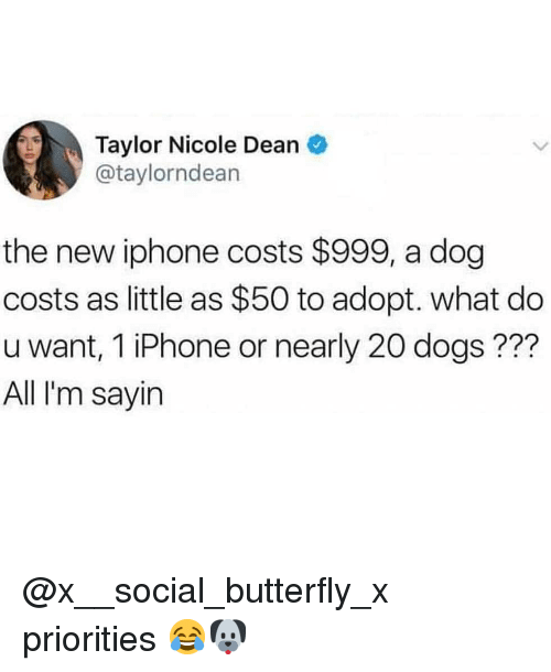 Dogs, Iphone, and Memes: Taylor Nicole Dean  @taylorndean  the new iphone costs $999, a dog  costs as little as $50 to adopt. what do  u want, 1 iPhone or nearly 20 dogs ???  All I'm sayirn @x__social_butterfly_x priorities 😂🐶