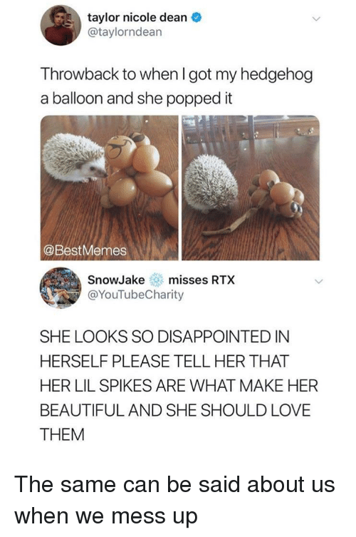 About Us: taylor nicole dean  @taylorndean  Throwback to when I got my hedgehog  a balloon and she popped it  @BestMemes  SnowJakemisses RTX  @YouTubeCharity  SHE LOOKS SO DISAPPOINTED IN  HERSELF PLEASE TELL HER THAT  HER LIL SPIKES ARE WHAT MAKE HER  BEAUTIFUL AND SHE SHOULD LOVE  THEM The same can be said about us when we mess up