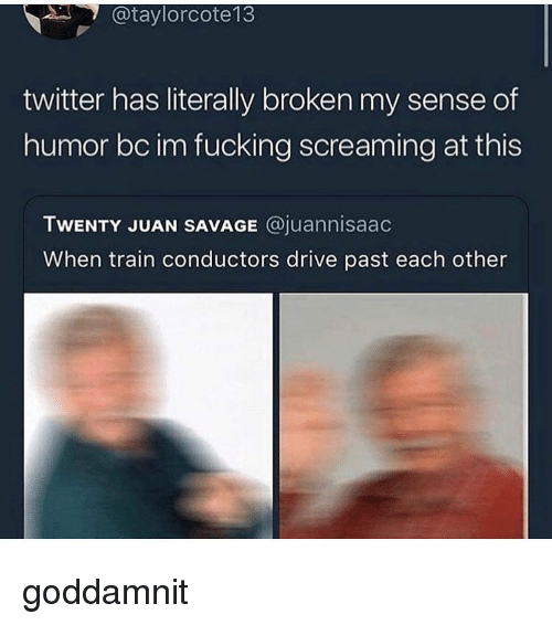 Fucking, Memes, and Savage: @taylorcote13  twitter has literally broken my sense of  humor bc im fucking screaming at this  TWENTY JUAN SAVAGE @juannisaac  When train conductors drive past each other goddamnit