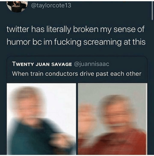 Train: @taylorcote13  twitter has literally broken my sense of  humor bc im fucking screaming at this  TWENTY JUAN SAVAGE @juannisaac  When train conductors drive past each other