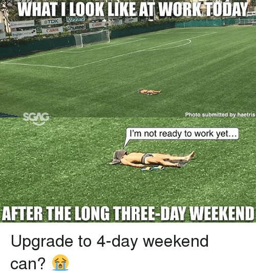 Memes, Work, and 🤖: TDK  cation.  Photo submitted by haetris  I'm not ready to work yet..  AFTER THE LONG THREE-DAY WEEKEND Upgrade to 4-day weekend can? 😭