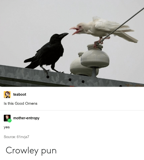 Crowley Tumblr