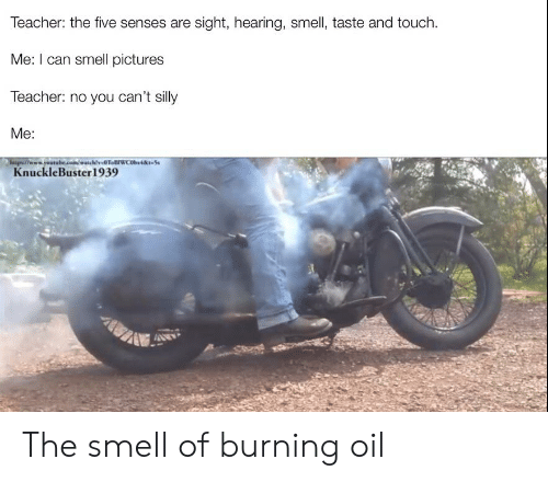 🐣 25+ Best Memes About I Love the Smell of Napalm in the