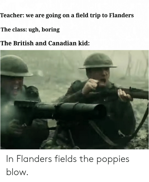Poppies: Teacher: we are going on a field trip to Flanders  The class: ugh, boring  The British and Canadian kid: In Flanders fields the poppies blow.