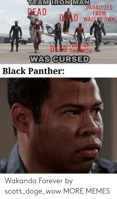 paralyzed: TEAM IRON MAN  PARALYZED  FROM  DAU WAISDOWN  PEAD  DEAU THE MCU  WAS CURSED  Black Panther: Wakanda Forever by scott_doge_wow MORE MEMES