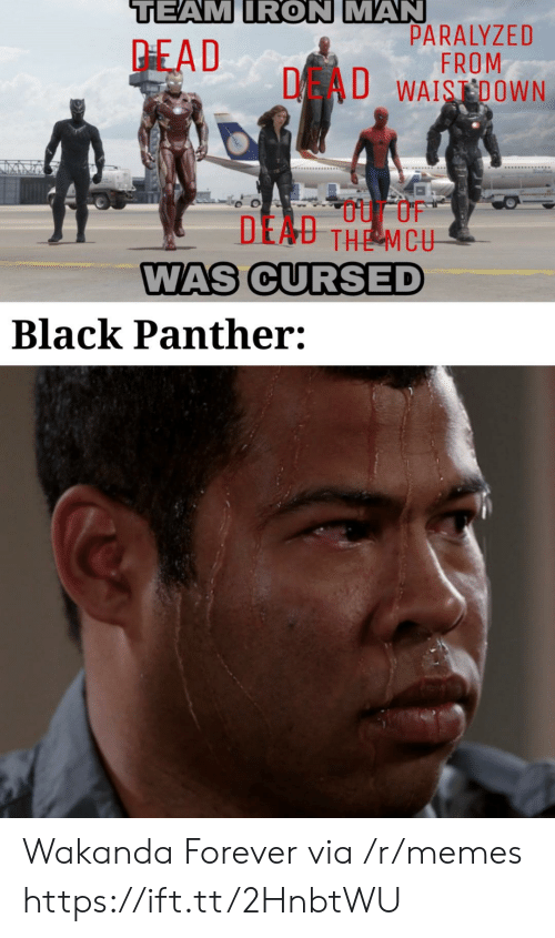 paralyzed: TEAM IRON MAN  PARALYZED  FROM  DAU WAISDOWN  PEAD  DEAU THE MCU  WAS CURSED  Black Panther: Wakanda Forever via /r/memes https://ift.tt/2HnbtWU