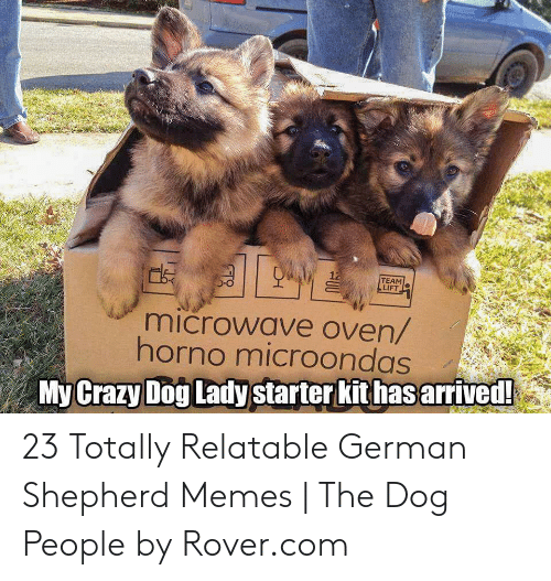 Crazy, Memes, and German Shepherd: TEAM  LIFT  microwave oven/  horno microondas  Crazy Dog Lady  My  starter kit has arrived 23 Totally Relatable German Shepherd Memes | The Dog People by Rover.com