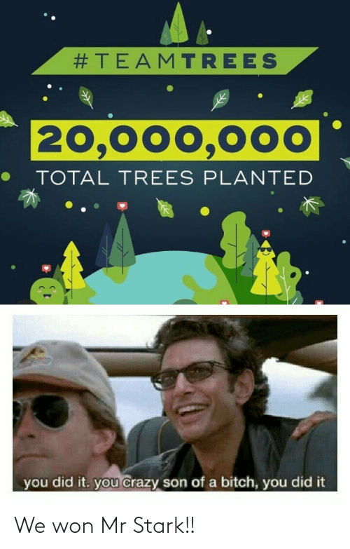 total:  #TEAMTREES  20,000,000  TOTAL TREES PLANTED  you did it. you crazy son of a bitch, you did it We won Mr Stark!!
