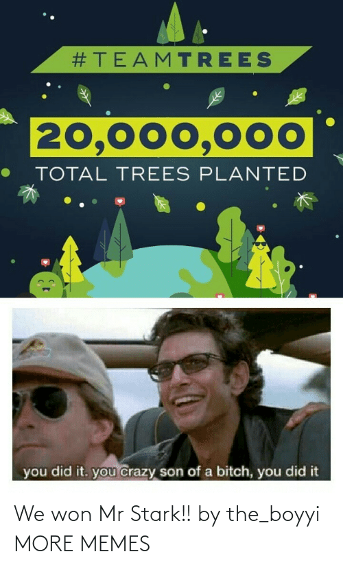 total:  #TEAMTREES  20,000,000  TOTAL TREES PLANTED  you did it. you crazy son of a bitch, you did it We won Mr Stark!! by the_boyyi MORE MEMES
