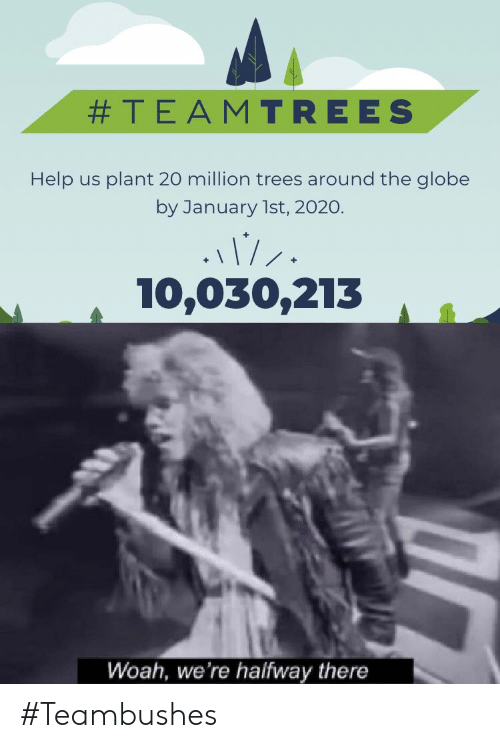 woah:  #TEAMTREES  Help us plant 20 million trees around the globe  by January 1st, 2020.  10,030,213  Woah, we're halfway there #Teambushes