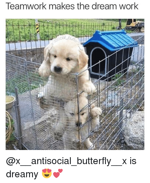 Antisociable: Teamwork makes the dream work  ocial b2 @x__antisocial_butterfly__x is dreamy 😍💕