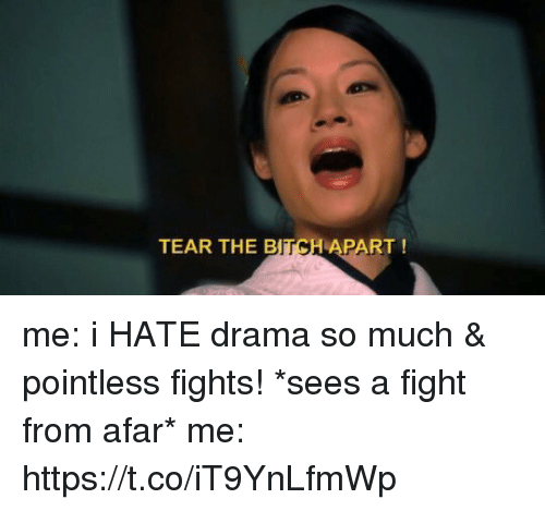 from afar: TEAR THE B  TCH  APART! me: i HATE drama so much & pointless fights!  *sees a fight from afar*  me: https://t.co/iT9YnLfmWp