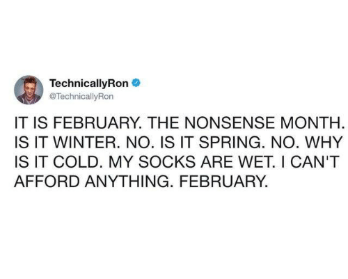 Dank, Winter, and Spring: TechnicallyRon  @TechnicallyRon  IT IS FEBRUARY. THE NONSENSE MONTH  IS IT WINTER. NO. IS IT SPRING. NO. WHY  IS IT COLD. MY SOCKS ARE WET. I CAN'T  AFFORD ANYTHING. FEBRUARY.