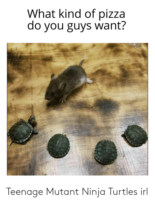 teenage: Teenage Mutant Ninja Turtles irl