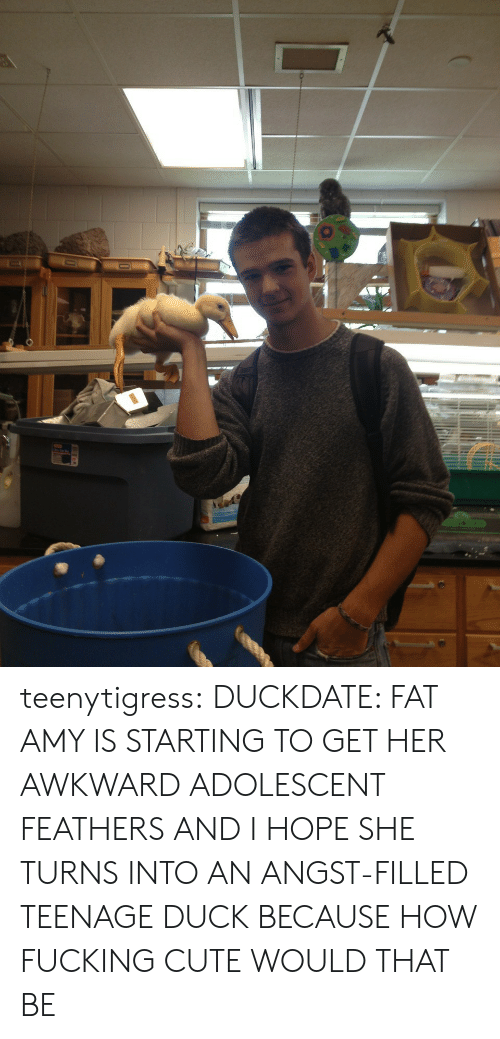 fat amy: teenytigress:  DUCKDATE: FAT AMY IS STARTING TO GET HER AWKWARD ADOLESCENT FEATHERS AND I HOPE SHE TURNS INTO AN ANGST-FILLED TEENAGE DUCK BECAUSE HOW FUCKING CUTE WOULD THAT BE