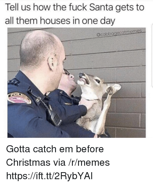 Christmas, Memes, and Fuck: Tell us how the fuck Santa gets to  all them houses in one day  acabbagecatmemes Gotta catch em before Christmas via /r/memes https://ift.tt/2RybYAI