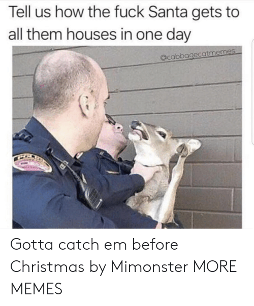 Christmas, Dank, and Memes: Tell us how the fuck Santa gets to  all them houses in one day  acabbagecatmemes Gotta catch em before Christmas by Mimonster MORE MEMES