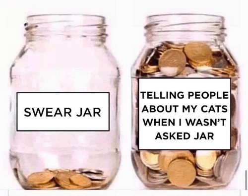 Cats, Memes, and 🤖: TELLING PEOPLE  ABOUT MY CATS  SWEAR JAR  WHEN I WASN'T  ASKED JAR