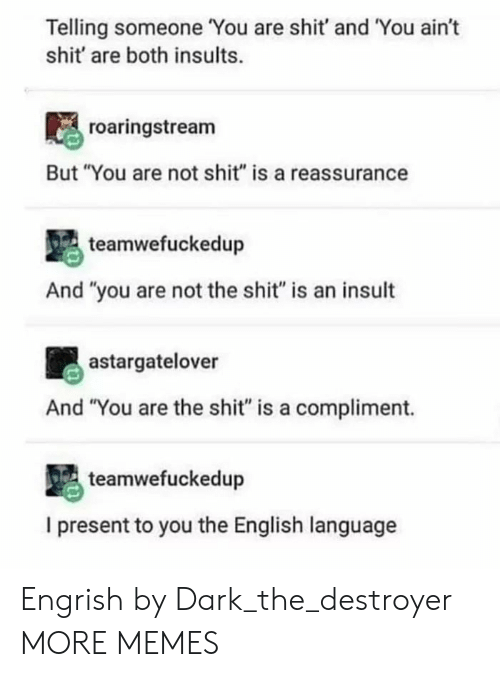 "Engrish: Telling someone You are shit' and You ain't  shit' are both insults.  roaringstream  But ""You are not shit"" is a reassurance  teamwefuckedup  And ""you are not the shit"" is an insult  astargatelover  And ""You are the shit"" is a compliment.  teamwefuckedup  I present to you the English language Engrish by Dark_the_destroyer MORE MEMES"