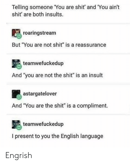 "Engrish: Telling someone You are shit' and You ain't  shit' are both insults.  roaringstream  But ""You are not shit"" is a reassurance  teamwefuckedup  And ""you are not the shit"" is an insult  astargatelover  And ""You are the shit"" is a compliment.  teamwefuckedup  I present to you the English language Engrish"