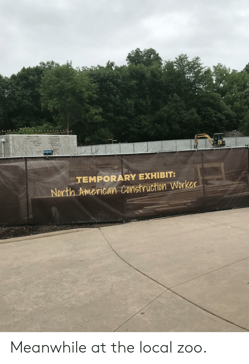 American, Construction, and Zoo: TEMPORARY EXHIBIT:  North American Construction Worker Meanwhile at the local zoo.