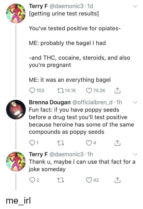 poppy: Terry F @daemonic3 1d  [getting urine test results]  You've tested positive for opiates-  ME: probably the bagel I had  -and THC, cocaine, steroids, and also  you're pregnant  ME: it was an everything bagel  103 14.1K 74.2K  Brenna Dougan aofficialbren d Th  Fun fact: if you have poppy seeds  before a drug test you'll test positive  because heroine has some of the same  compounds as poppy seedS  4  Terry F @daemonic3 1h  Thank u, maybe I can use that fact for a  joke someday  2 me_irl