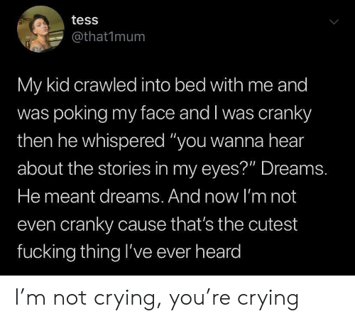 """Crying, Fucking, and Not Crying: tess  @that1mum  My kid crawled into bed with me and  was poking my face and I was cranky  then he whispered """"you wanna hear  about the stories in my eyes?"""" Dreams.  He meant dreams. And now l'm not  even cranky cause that's the cutest  fucking thing l've ever heard I'm not crying, you're crying"""