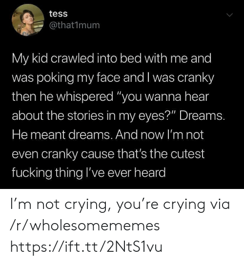 """Whispered: tess  @that1mum  My kid crawled into bed with me and  was poking my face and I was cranky  then he whispered """"you wanna hear  about the stories in my eyes?"""" Dreams.  He meant dreams. And now l'm not  even cranky cause that's the cutest  fucking thing l've ever heard I'm not crying, you're crying via /r/wholesomememes https://ift.tt/2NtS1vu"""