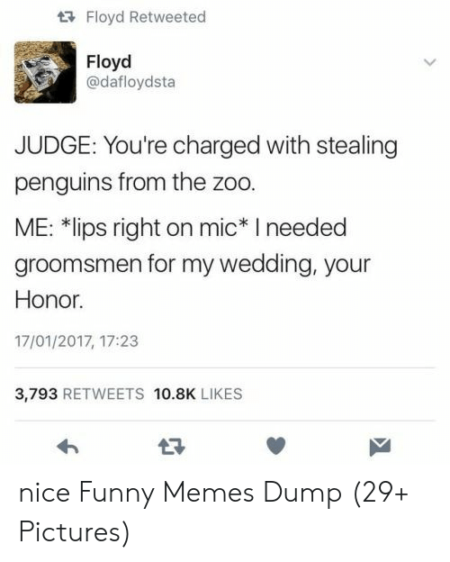 Groomsmen: tFloyd Retweeted  Floyd  @dafloydsta  JUDGE: You're charged with stealing  penguins from the zoo.  ME: *lips right on mic* I needed  groomsmen for my wedding, your  Honor.  17/01/2017, 17:23  3,793 RETWEETS 10.8K LIKES nice Funny Memes Dump (29+ Pictures)