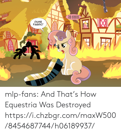 mlp: THе ноеоое  THе нороое  DUMB  FABRIC!  ЛL  Об0  Но mlp-fans:  And That's How Equestria Was Destroyed https://i.chzbgr.com/maxW500/8454687744/h06189937/