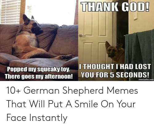 God, Memes, and Lost: THANK GOD!  Popped my squeaky toy.THOUGHT I HAD LOST  There goes my afternoon! YOU FOR 5 SECONDS!  mematic.net 10+ German Shepherd Memes That Will Put A Smile On Your Face Instantly