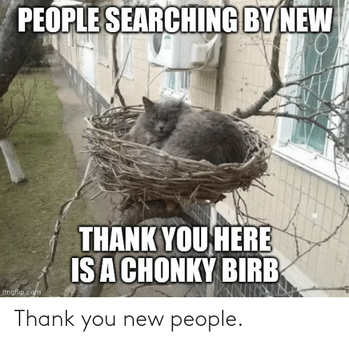 New People: Thank you new people.