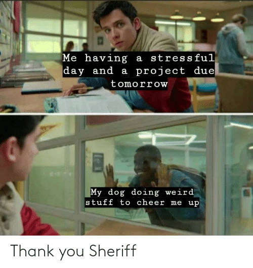 thank: Thank you Sheriff