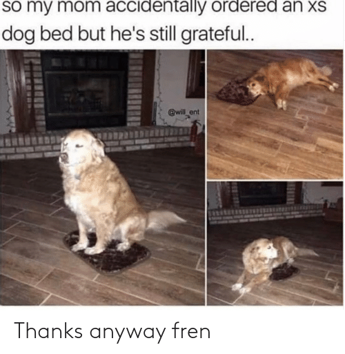 anyway: Thanks anyway fren