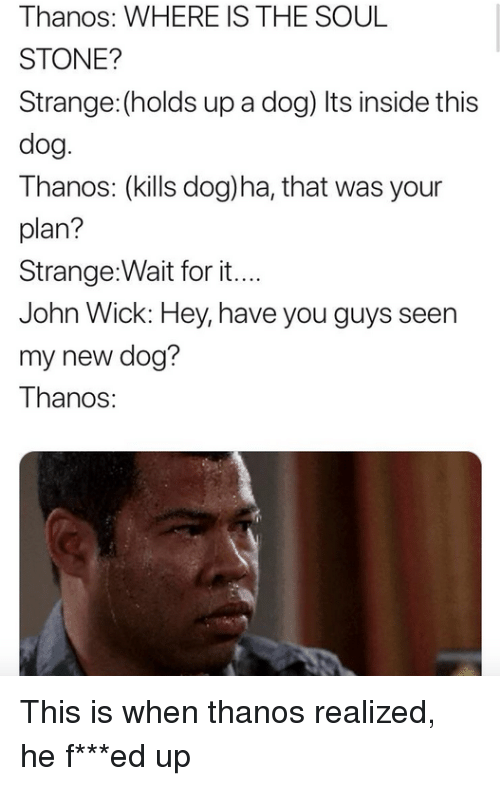 John Wick, Thanos, and Dog: Thanos: WHERE IS THE SOUL  STONE?  Strange: (holds up a dog) Its inside this  dog.  Thanos: (kills dog)ha, that was your  plan?  Strange:Wait for it....  John Wick: Hey, have you guys seen  my new dog?  Thanos <p>This is when thanos realized, he f***ed up</p>