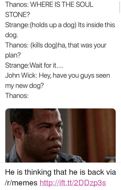 """John Wick, Memes, and Http: Thanos: WHERE IS THE SOUL  STONE?  Strange: (holds up a dog) Its inside this  dog  Thanos: (kills dog)ha, that was your  plan?  Strange:Wait for it...  John Wick: Hey, have you guys seen  my new dog?  Thanos: <p>He is thinking that he is back via /r/memes <a href=""""http://ift.tt/2DDzp3s"""">http://ift.tt/2DDzp3s</a></p>"""