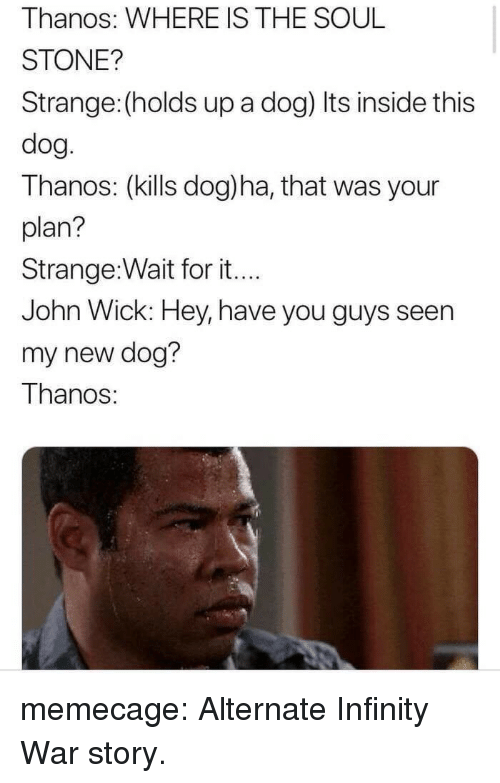 New Dog: Thanos: WHERE IS THE SOUL  STONE?  Strange: (holds up a dog) Its inside this  dog.  Thanos: (kills dog)ha, that was your  plan?  Strange:Wait for it..  John Wick: Hey, have you guys seen  my new dog?  Thanos: memecage:  Alternate Infinity War story.