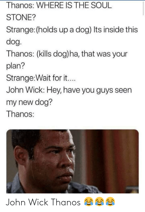 John Wick, Thanos, and Dog: Thanos: WHERE IS THE SOUL  STONE?  Strange:(holds up a dog) Its inside this  dog.  Thanos: (kills dog)ha, that was your  plan?  Strange:Wait for it...  John Wick: Hey, have you guys seen  my new dog?  Thanos: John Wick Thanos 😂😂😂